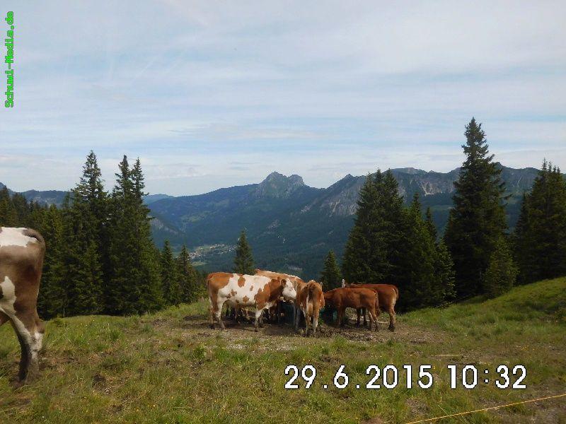 http://www.bergwandern.schuwi-media.de/galerie/cache/vs_Krinnenspitze%20Edenalpe_krinnen_17.jpg